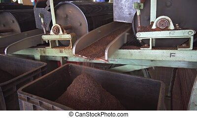 Machines Sorting Pulverized Tea in Sri Lankan Factory, with...