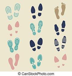 macho, coloridos, pegadas, -, sapato, femininas, desporto