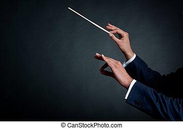 macho, conductor, orquesta
