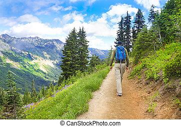 macho, hiker, caminhando cima, a, rastro, montanhas, perto,...