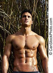 macho, modelo, com, músculos, ligado, a, campo