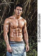 macho, modelo, con, músculos, en, el, campo