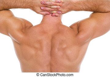 macho, primer plano, espalda, muscular