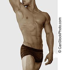 macho, torso