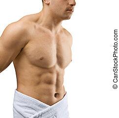 macho, torso, isolado