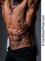 macht, jonge, gespierd, bodybuilder, sexy, mannelijke , torso
