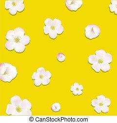 macieira, flores, cartaz