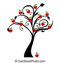 macieira