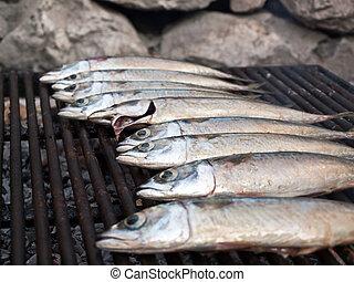 Mackarel fish on grill