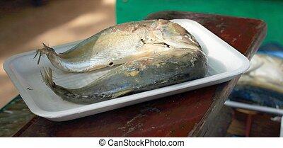 Mackerel fish in the market