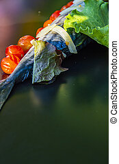 Mackerel fish on a black background with vegetables.