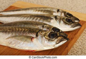 Four mackerels on wooden plate