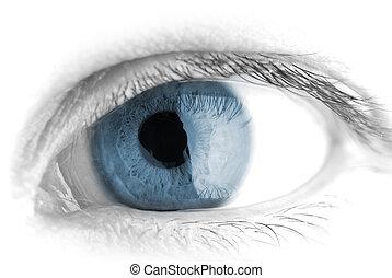 macro , ανθρώπινος , eye.