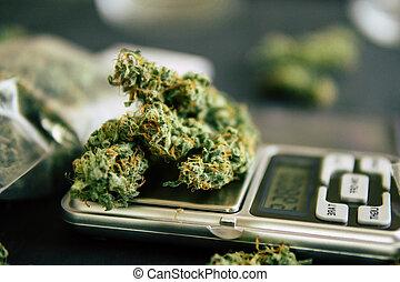 macro, balances., trichomes, marijuana, mauvaise herbe, cannabis, fleurs