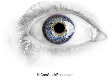 Macro blue eye with lots of details isolated on white -...