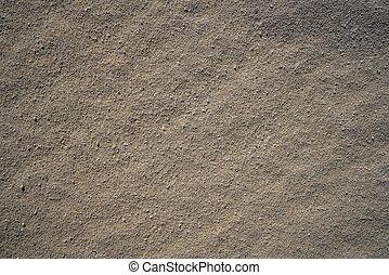 macro , cancun , λεπτομέρεια , πλοκή , άμμος ακρογιαλιά