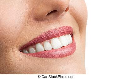 macro, cima, de, perfeitos, teeth.