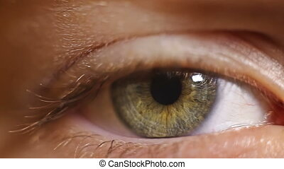 macro close-up eye blinking eyelashes child - macro close-up...