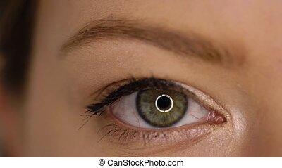 Macro Close-up eye blinking - Female Close-up green eye...