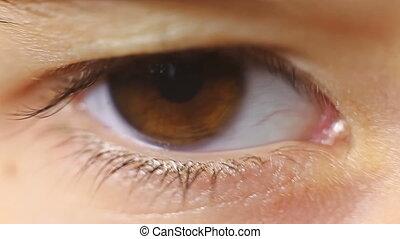 macro close-up eye child blinking eyelashes - macro close-up...