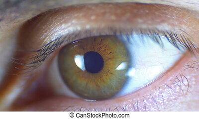 Macro Close-up Male Human Eye Blinking