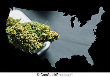 macro, de, cannabis, marijuana, mala hierba, flores, con, trichomes, en, escalas