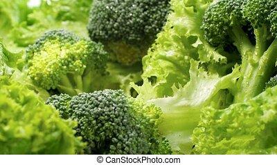 Macro dolly video of fresh green lettuce leaves, broccoli ...