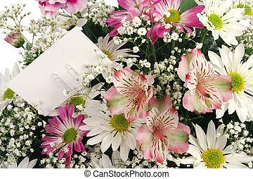 macro, fleur, fond