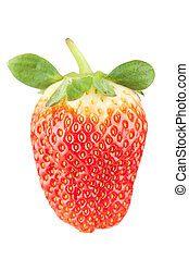 Macro food collection - Strawberry