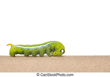 Macro green worm on the paper roll isolated on white...