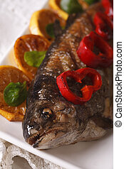macro grilled trout on a plate. vertical
