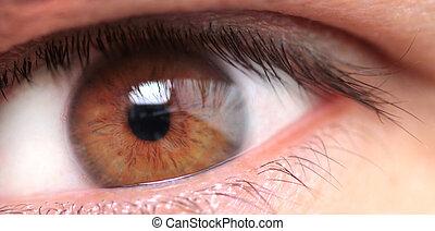 man's brown eye - Macro image of a man's brown eye