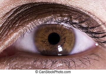 macro, imagem, olho, human