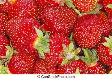 strawberry texture - macro of a strawberry texture