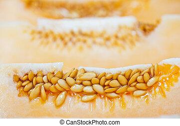 macro of cantaloup cut detail