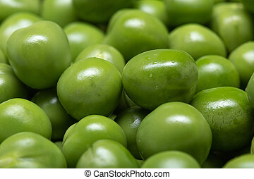 Macro of Green pea background. Pisum sativum