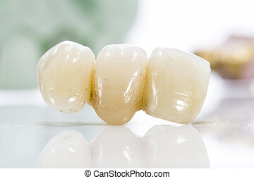 Macro of prosthetic teeth on a white background.