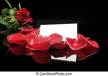 macro of red rose 2
