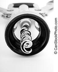 Macro of wing corkscrew isolated on white background