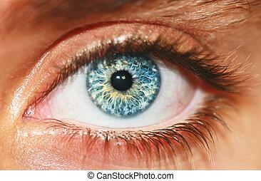 macro, ojo, humano, vista