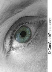 macro, oog, blauwe