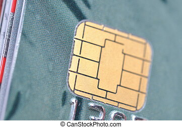 macro, puce, carte affaires