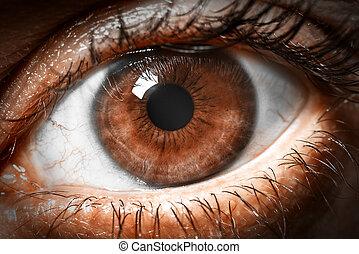 macro, schot., menselijk, bruine , extreem, oog