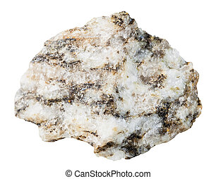 specimen of Gneiss mineral stone isolated - macro shooting ...