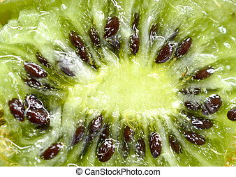 macro shot of a kiwi fruit