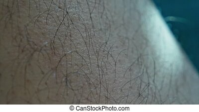 Macro shot of hairy cat legs of a young man 4k clip