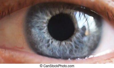 Macro shot of male human blue eye in slow motion.