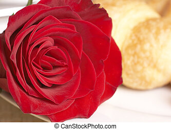 Macro shot of red rose with breakfast