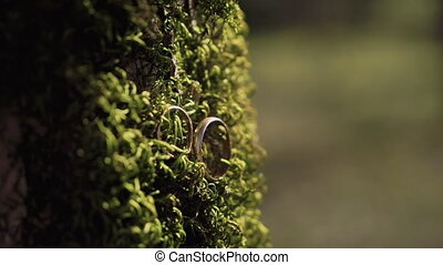 Macro shot of two golden wedding rings on the thick green...