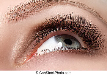 Macro shot of woman's beautiful eye with long eyelashes